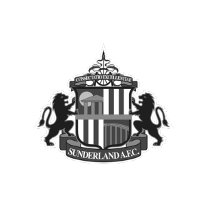 Logo for Sunderland AFC